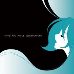 Voice Electronique
